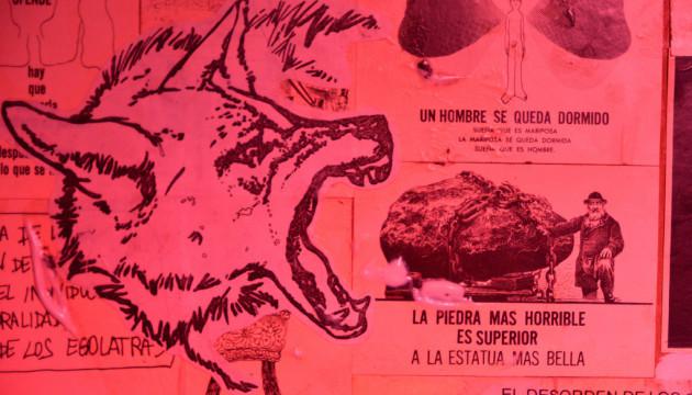 Artefacto canino, detalle 2