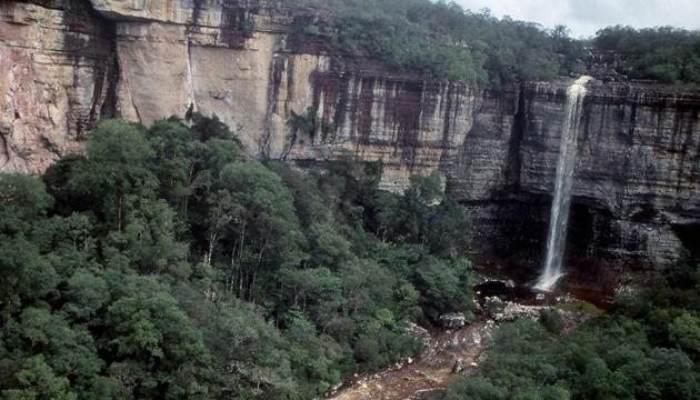 Parque Nacional de Chiribiquete 6