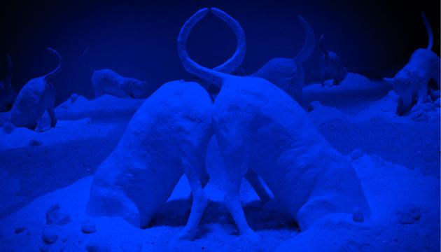 Encontraron cielo, detalle Sala Azul