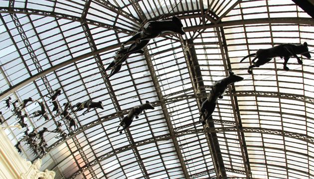 Encontraron cielo, hall central Museo de Bellas Artes