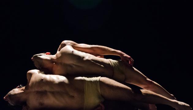 El testigo, coreografía de Claude Brumachon (Francia), Perrera Arte 2015