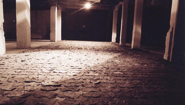 La locura, instalación y performance, Janet Toro, Perrera Arte 1998