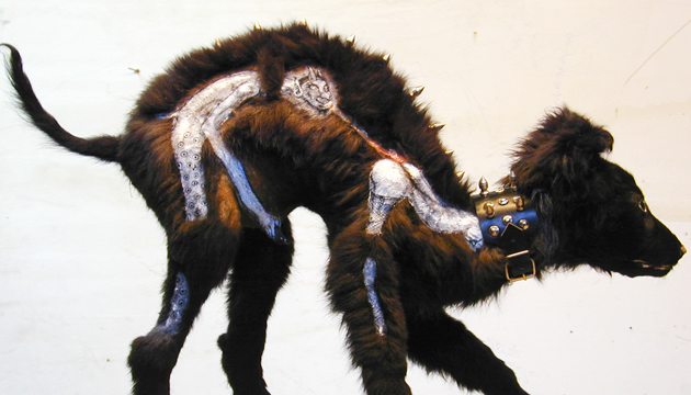 Oleos sobre perro, taxidermia, Centro Alameda, 2002