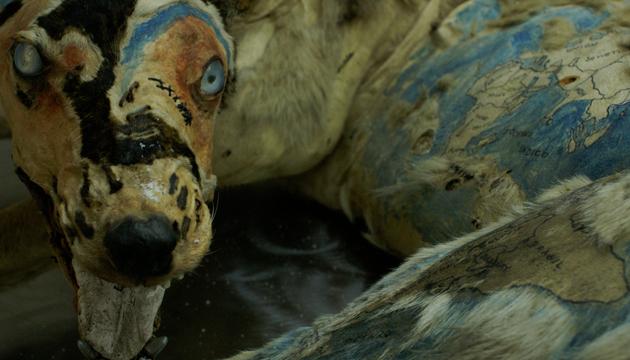 Oleos sobre perro, taxidermia, Centro Arte Alameda, 2002