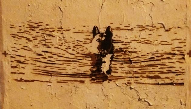 La guerra del agua, Nathalia Aragonese, Perrera Arte, toma 2