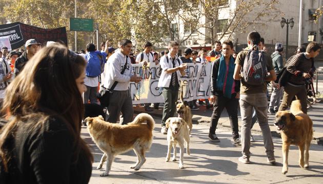 Manifestación callejera, Santiago de Chile, toma 2