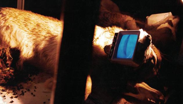 Lemebel se puso en el hocico de los perros para esta obra de Becerro