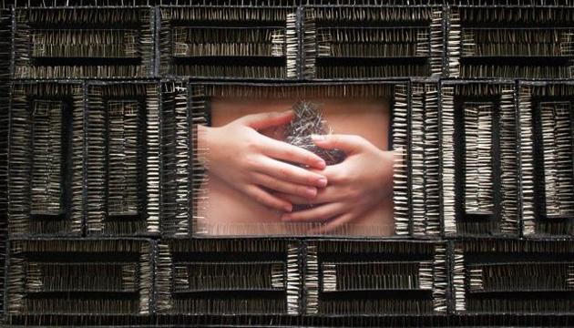 Sin título, Lidzie Alvisa, 2008