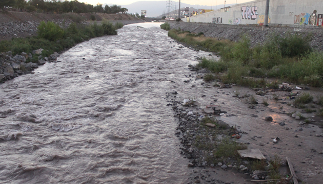 Becerro vuelve a trabajar en el río Mapocho
