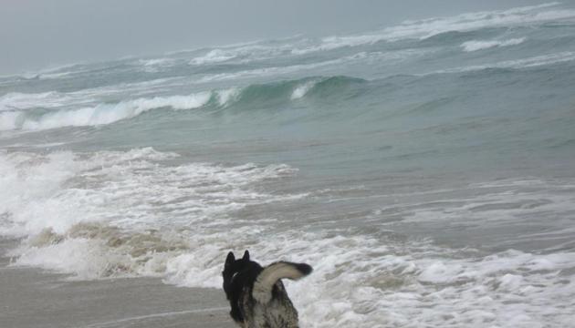 Mapocho/Espectros, Capitán enfrenta el Océano Pacífico