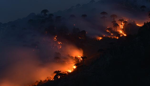 El devastador incendio de la reserva China Muerta, en marzo de 2015