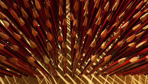 Detalle de los afilados lápices