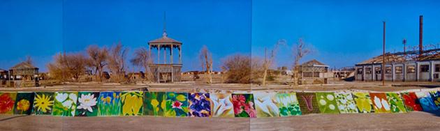 Flores del desierto / 1995 / ex oficina salitrera de Chacabuco